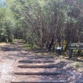 Candlebark Gully Nature Trail